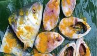 সহজ পদ্ধতিতে ইলিশ মাছ সংরক্ষণ